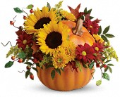 Teleflora's Pretty Pumpkin Bouquet in Burlington WI, gia bella Flowers and Gifts