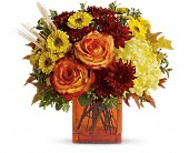 Teleflora's Autumn Expression in Elkland PA, The Rainbow Rose