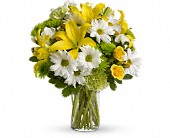 Morning Bright in Allen TX, Carriage House Floral & Gift