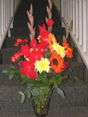 Ray of Sunshine in Lake Charles LA, A Daisy A Day Flowers & Gifts, Inc.