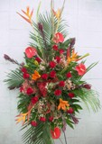 Tropical Punch Spray in Lake Charles, Louisiana, A Daisy A Day Flowers & Gifts, Inc.