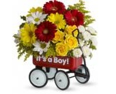 Baby Boy Wow Wagon in Smyrna GA, Floral Creations Florist