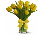 Sunny Yellow Tulips in Smyrna GA, Floral Creations Florist