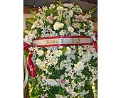 Sympathy in Honolulu HI, Patty's Floral Designs, Inc.