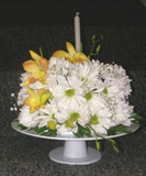Daisy Birthday Surprise in Lake Charles LA, A Daisy A Day Flowers & Gifts, Inc.