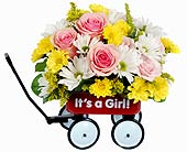 Felly's Baby's First Wagon, Girl in Madison WI, Felly's Flowers