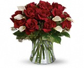 Be Still My Heart - Dozen Red Roses in Essex, Ontario, Essex Flower Basket