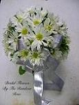 Round Daisy Bouquet in Elkland PA, The Rainbow Rose