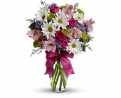 Pretty Please in Rocky Mount NC, Flowers and Gifts of Rocky Mount Inc.