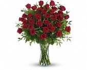 Breathtaking Beauty - 3 Dozen Long Stemmed Roses in Harlan KY, Coming Up Roses