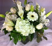 PURE ELEGANCE by Rubrums in Ossining NY, Rubrums Florist Ltd.
