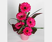 Gerbera Vase (3 colors available) in Southampton PA, Domenic Graziano Flowers