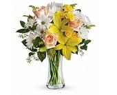 Daisies and Sunbeams in Smyrna GA, Floral Creations Florist