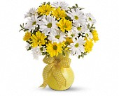 Teleflora's Upsy Daisy in Aston PA, Wise Originals Florists & Gifts