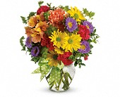 Make a Wish in New York NY, New York Best Florist
