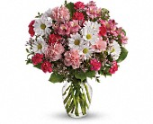 Teleflora's Sweet Tenderness in Mississauga ON, Mums Flowers