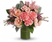Polished Pinks in Bellevue WA, Bellevue Crossroads Florist