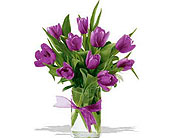 Spring-Tulips--Purple in San Clemente CA, Beach City Florist