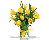 Spring-Tulips--Yellow in San Clemente CA, Beach City Florist