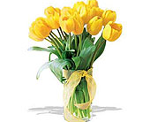 Spring-Tulips--Deluxe-Yellow in San Clemente CA, Beach City Florist