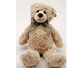 Beige-Teddy-Bear in San Clemente CA, Beach City Florist