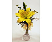 Single-Stem-Yellow-Lily in San Clemente CA, Beach City Florist