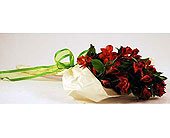 Flowers Depot Red-Alstroemeria-Wrap in San Clemente CA, Beach City Florist