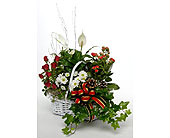 Winter-Treasure in San Clemente CA, Beach City Florist