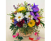 Happy-Birthday-Surprise! in San Clemente CA, Beach City Florist