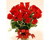Get-Shorty-Red-Twenty-Four in San Clemente CA, Beach City Florist