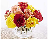 The-FTD-Beauty-of-Roses�-Bouquet in San Clemente CA, Beach City Florist