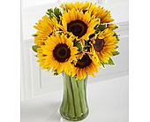 The-FTD-Endless-Summer-Sunflower-Bouquet in San Clemente CA, Beach City Florist
