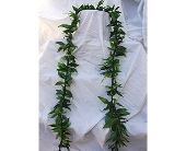 Ti Leaf Maile Style Lei in San Diego CA, Flowers Of Point Loma