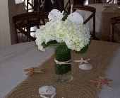 Seaside Hydrangea in Palm Beach Gardens FL, Floral Gardens & Gifts