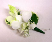 Dendrobium Orchid Boutonniere in Bayside, New York, Bell Bay Florist
