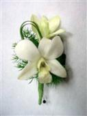 Orchid and Freesia Boutonniere in Belleville ON, Live, Love and Laugh Flowers, Antiques and Gifts