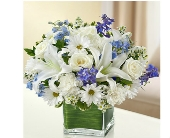 Healing Tears - Blue and White in Watertown CT, Agnew Florist