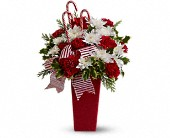 Peppermint Posies, picture