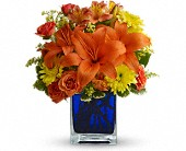 Summer Nights by Teleflora in North Syracuse NY, The Curious Rose Floral Designs