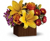 Teleflora's Full of Laughter in Johnstown NY, Studio Herbage Florist
