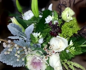 Desert Rose in Orinda, California, Misaghi Design Orinda Florist