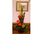Protea and bamboo zen in Melbourne FL, Paradise Beach Florist & Gifts