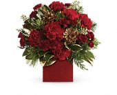 Laughter and Cheer by Teleflora in Milford MA, Francis Flowers, Inc.