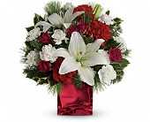 Caroling in the Snow by Teleflora in Waldron AR, Ebie's Giftbox & Flowers