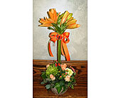 Orange lily topiary in Melbourne FL, Paradise Beach Florist & Gifts