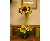 Sunflower topiary in Melbourne FL, Paradise Beach Florist & Gifts