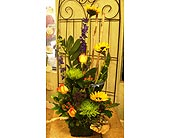 Fall flavor in Melbourne FL, Paradise Beach Florist & Gifts