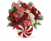 Teleflora's Peppermint Christmas Bouquet in Orlando FL, Elite Floral & Gift Shoppe
