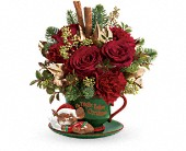 Teleflora's Send a Hug Night Before Christmas in New Britain CT, Weber's Nursery & Florist, Inc.