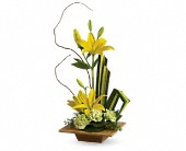 Teleflora's Bamboo Artistry in Burlington WI, gia bella Flowers and Gifts